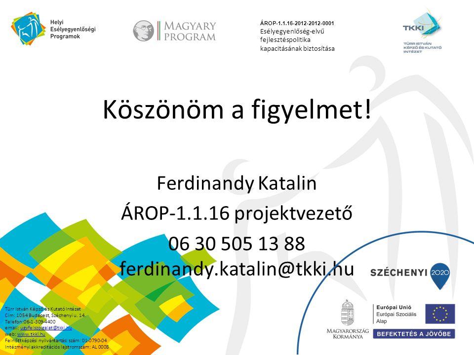 Köszönöm a figyelmet! Ferdinandy Katalin ÁROP-1.1.16 projektvezető 06 30 505 13 88 ferdinandy.katalin@tkki.hu ÁROP-1.1.16-2012-2012-0001 Esélyegyenlős