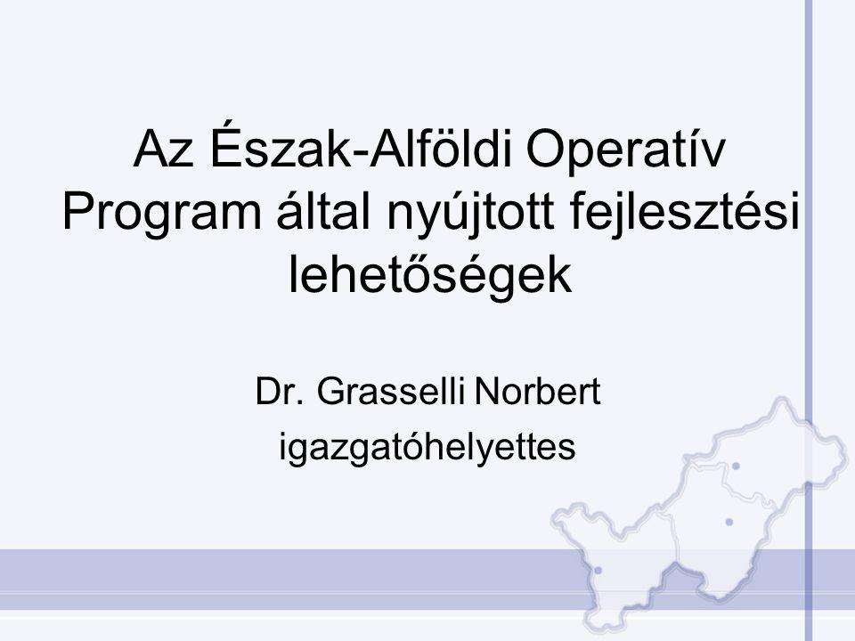 Az Észak-Alföldi Operatív Program által nyújtott fejlesztési lehetőségek Dr. Grasselli Norbert igazgatóhelyettes