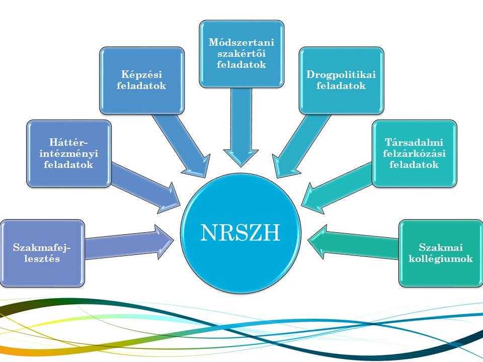 NRSZH Szakmafej- lesztés Háttér- intézményi feladatok Képzési feladatok Módszertani szakértői feladatok Drogpolitikai feladatok Társadalmi felzárkózás