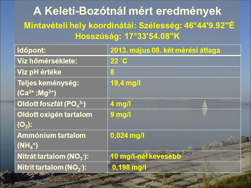 A Keleti-Bozótnál mért eredmények Mintavételi hely koordinátái: Szélesség: 46°44'9.92