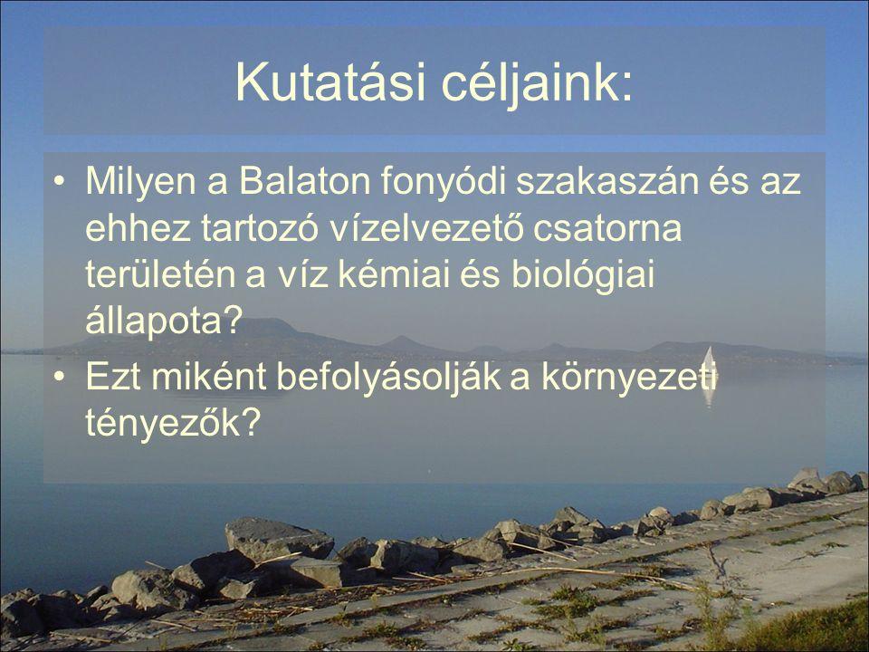 Kutatási céljaink: Milyen a Balaton fonyódi szakaszán és az ehhez tartozó vízelvezető csatorna területén a víz kémiai és biológiai állapota? Ezt mikén