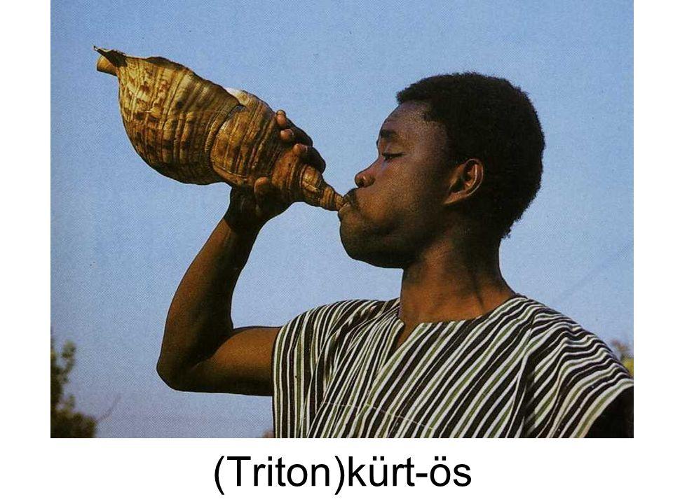 (Triton)kürt-ös
