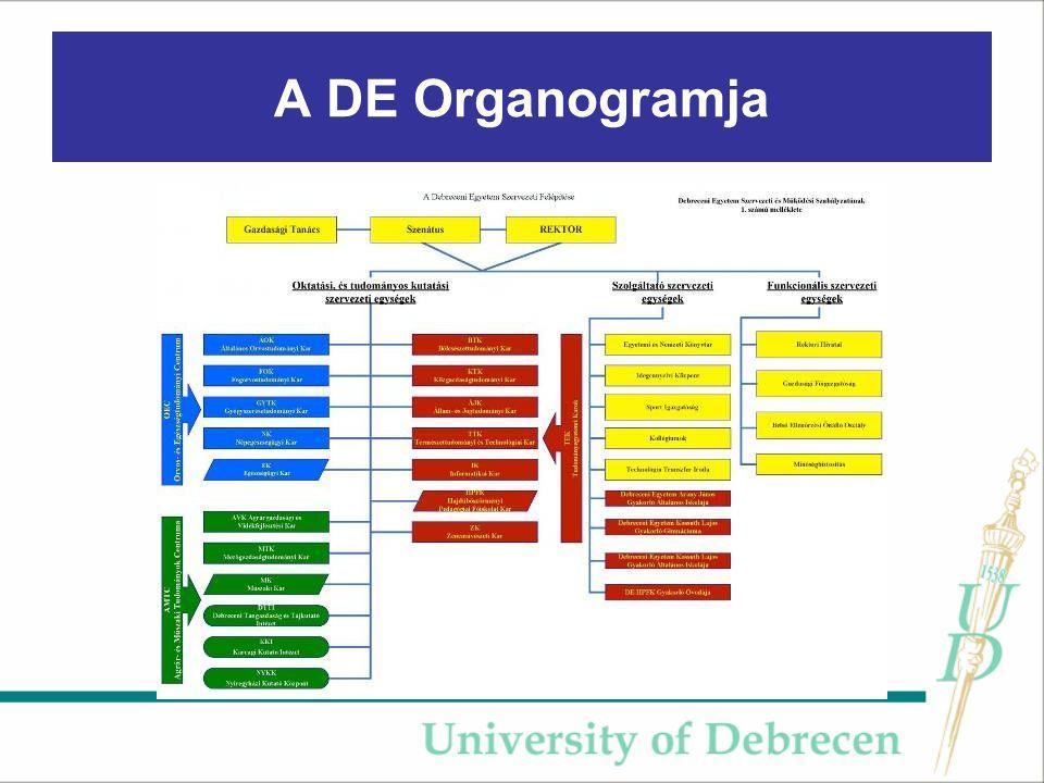 A DE Organogramja