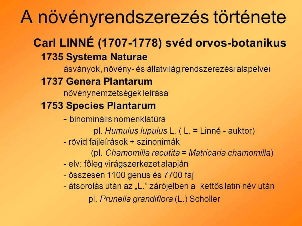 A növényrendszerezés története Carl LINNÉ (1707-1778) svéd orvos-botanikus 1735 Systema Naturae ásványok, növény- és állatvilág rendszerezési alapelvei 1737 Genera Plantarum növénynemzetségek leírása 1753 Species Plantarum - binominális nomenklatúra pl.