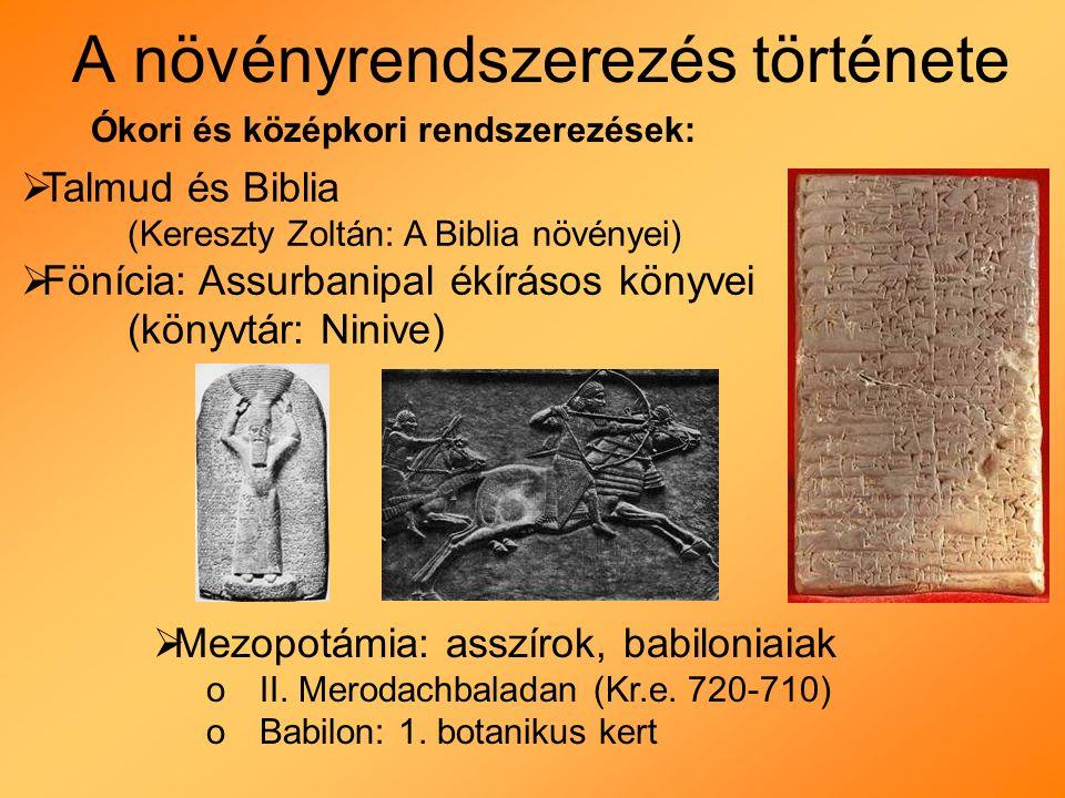 A növényrendszerezés története Hippokratész (Kr.e.