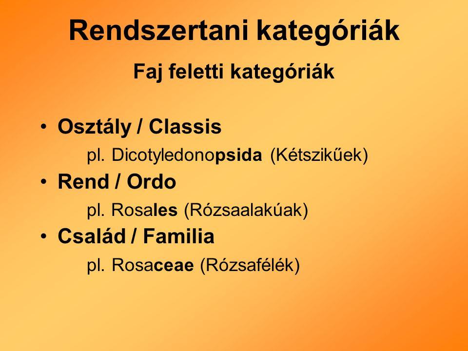 Rendszertani kategóriák Faj feletti kategóriák Osztály / Classis pl.