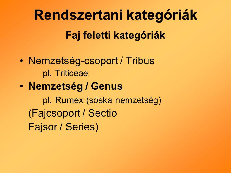 Rendszertani kategóriák Faj feletti kategóriák Nemzetség-csoport / Tribus pl.