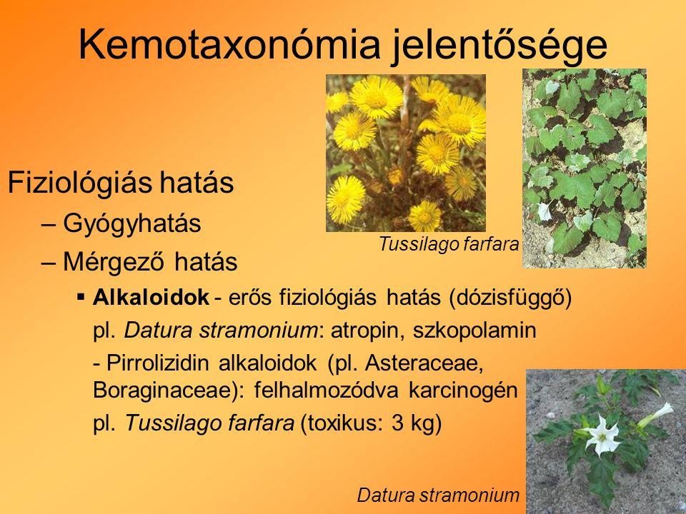 Kemotaxonómia jelentősége Fiziológiás hatás –Gyógyhatás –Mérgező hatás  Alkaloidok - erős fiziológiás hatás (dózisfüggő) pl.