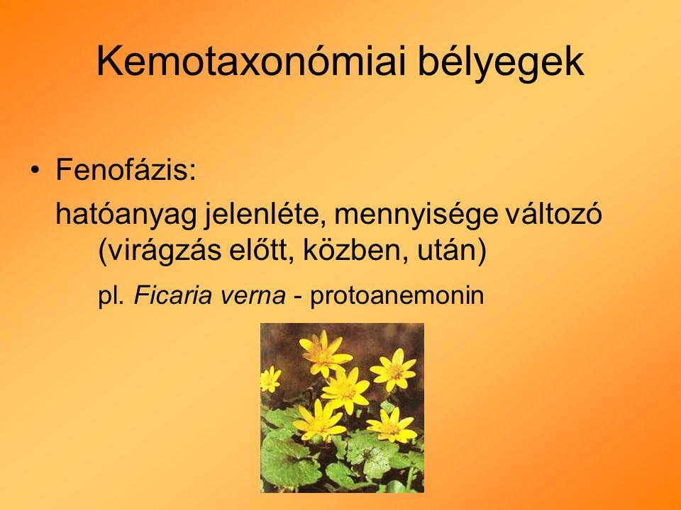 Kemotaxonómiai bélyegek Fenofázis: hatóanyag jelenléte, mennyisége változó (virágzás előtt, közben, után) pl.