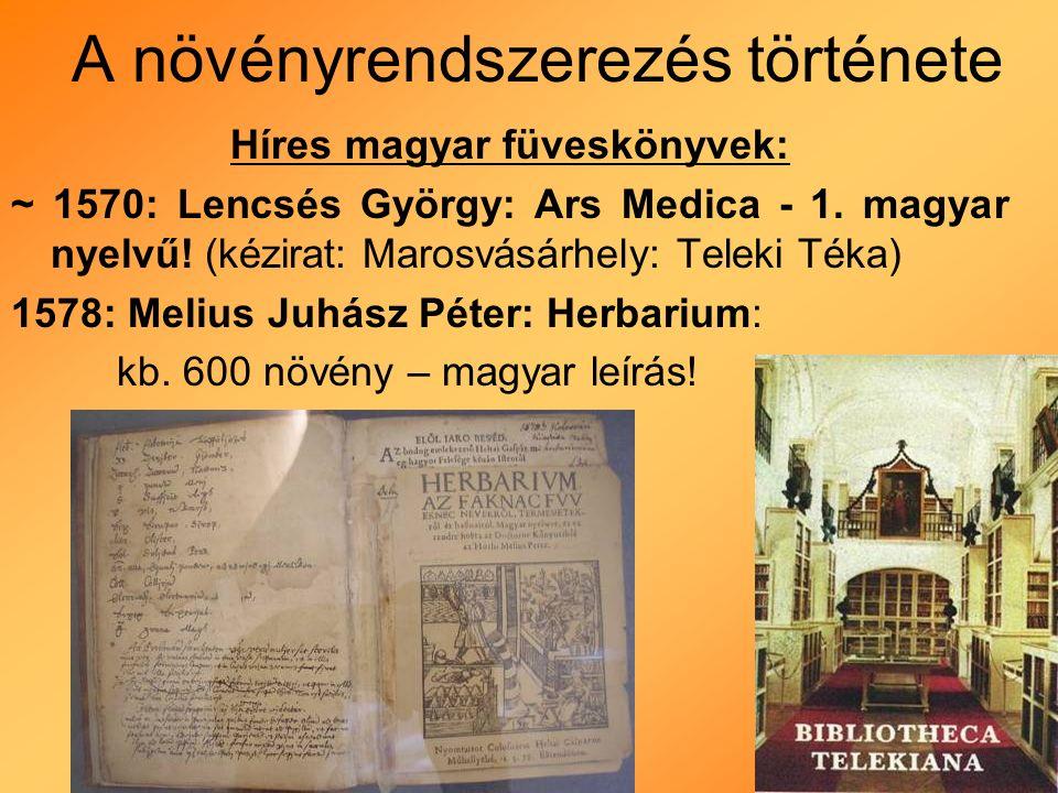 A növényrendszerezés története 1583: Carolus Clusius (belga származású): Stirpium Nomenclator Pannonicus -magyar népi nevek: Beythe Istvántól - Szombathely környékén dolgozott - gombák és növények