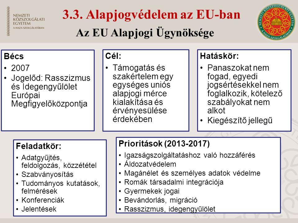 3.3. Alapjogvédelem az EU-ban Bécs 2007 Jogelőd: Rasszizmus és Idegengyűlölet Európai Megfigyelőközpontj a Cél: Támogatás és szakértelem egy egységes