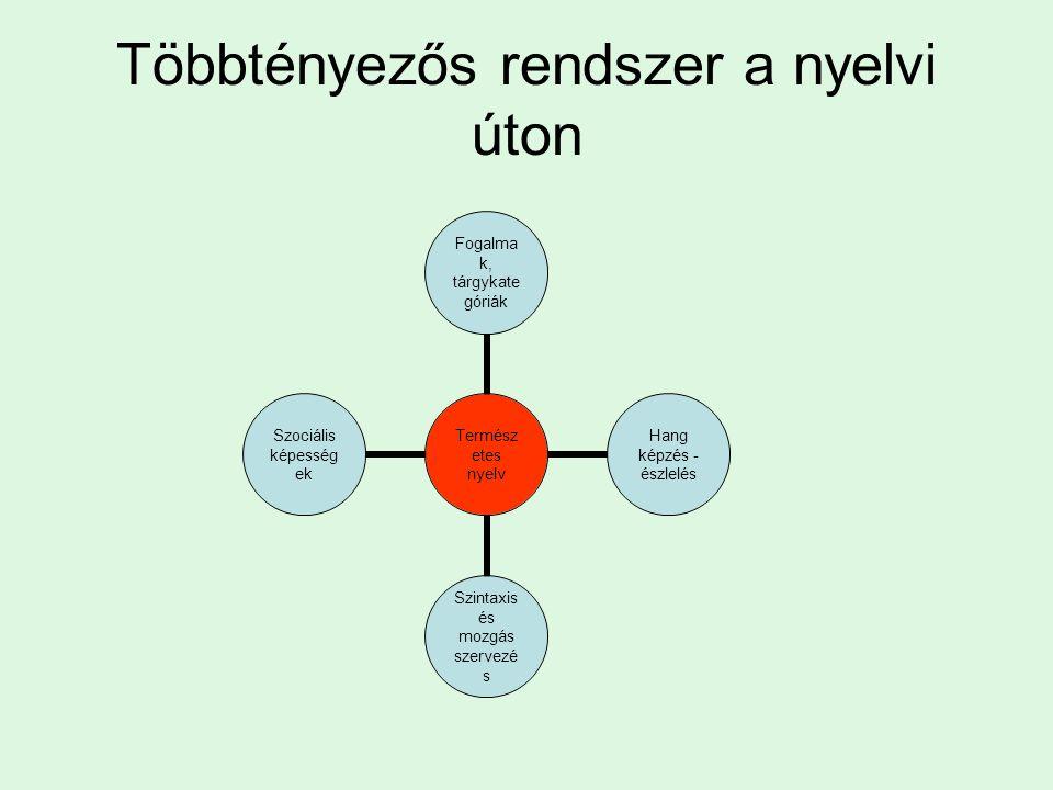 Többtényezős rendszer a nyelvi úton Természetes nyelv Fogalmak, tárgykategóriák Hang képzés - észlelés Szintaxis és mozgás szervezés Szociális képességek