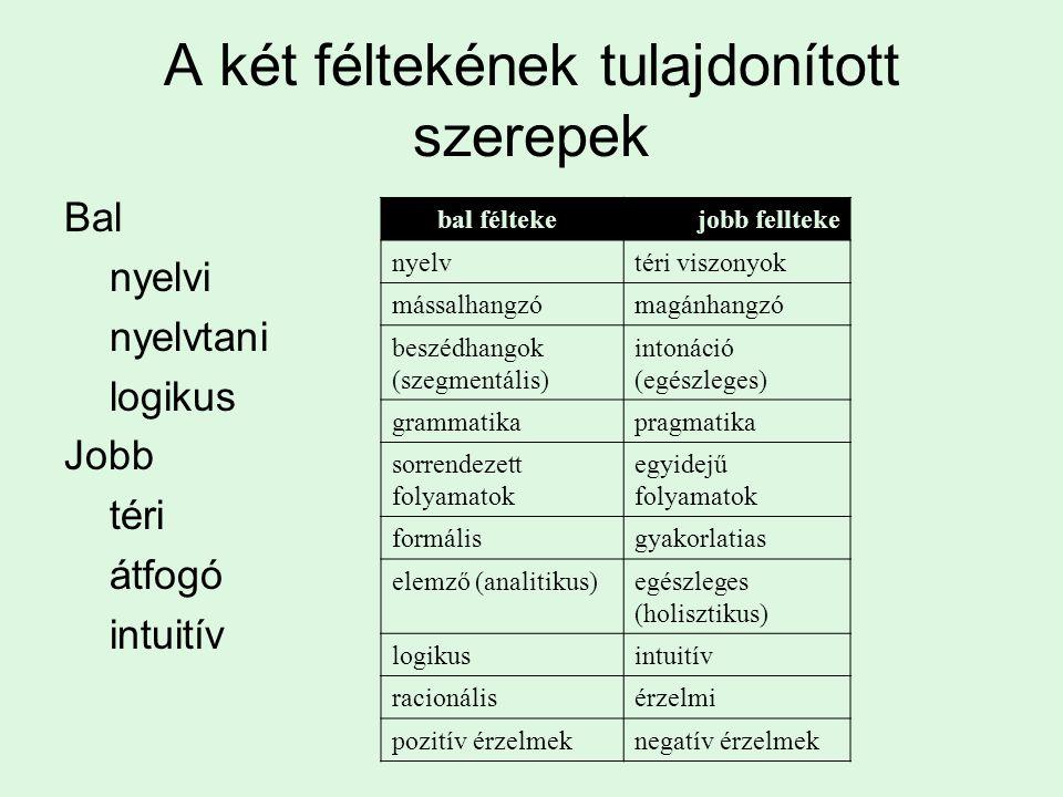 A két féltekének tulajdonított szerepek Bal nyelvi nyelvtani logikus Jobb téri átfogó intuitív Bal bal féltekeJobb jobb fellteke nyelvtéri viszonyok mássalhangzómagánhangzó beszédhangok (szegmentális) intonáció (egészleges) grammatikapragmatika sorrendezett folyamatok egyidejű folyamatok formálisgyakorlatias elemző (analitikus)egészleges (holisztikus) logikusintuitív racionálisérzelmi pozitív érzelmeknegatív érzelmek