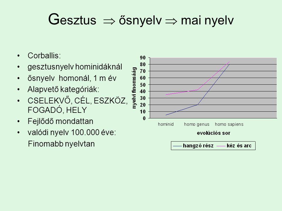 G esztus  ősnyelv  mai nyelv Corballis: gesztusnyelv hominidáknál ősnyelv homonál, 1 m év Alapvető kategóriák: CSELEKVŐ, CÉL, ESZKÖZ, FOGADÓ, HELY Fejlődő mondattan valódi nyelv 100.000 éve: Finomabb nyelvtan