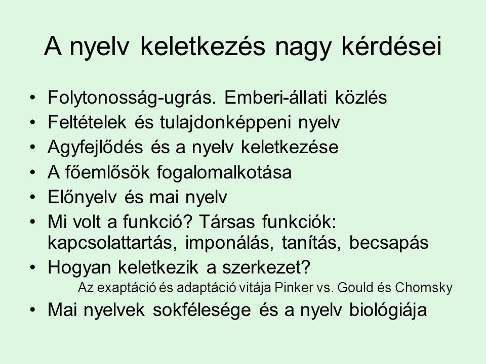 A nyelv keletkezés nagy kérdései Folytonosság-ugrás.