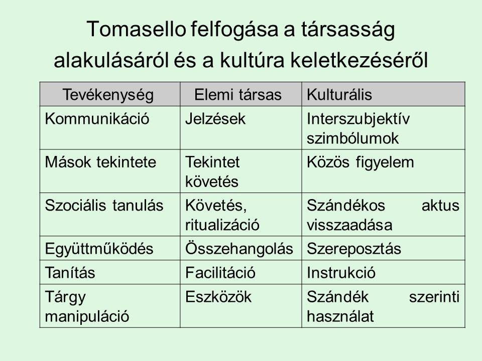 Tevékenység Elemi társasKulturális KommunikációJelzésekInterszubjektív szimbólumok Mások tekinteteTekintet követés Közös figyelem Szociális tanulásKövetés, ritualizáció Szándékos aktus visszaadása EgyüttműködésÖsszehangolásSzereposztás TanításFacilitációInstrukció Tárgy manipuláció EszközökSzándék szerinti használat Tomasello felfogása a társasság alakulásáról és a kultúra keletkezéséről