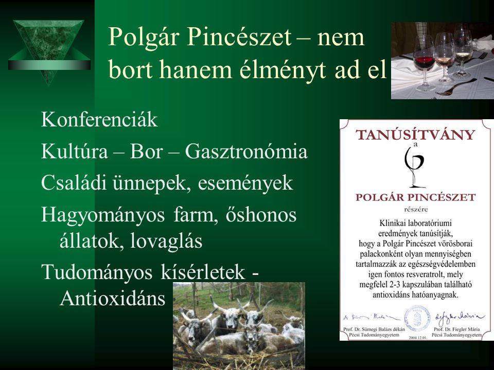 Polgár Pincészet – nem bort hanem élményt ad el Konferenciák Kultúra – Bor – Gasztronómia Családi ünnepek, események Hagyományos farm, őshonos állatok, lovaglás Tudományos kísérletek - Antioxidáns