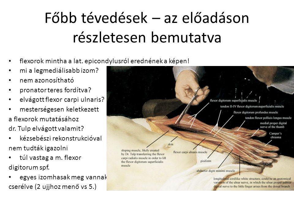 Főbb tévedések – az előadáson részletesen bemutatva flexorok mintha a lat. epicondylusról erednének a képen! mi a legmediálisabb izom? nem azonosíthat