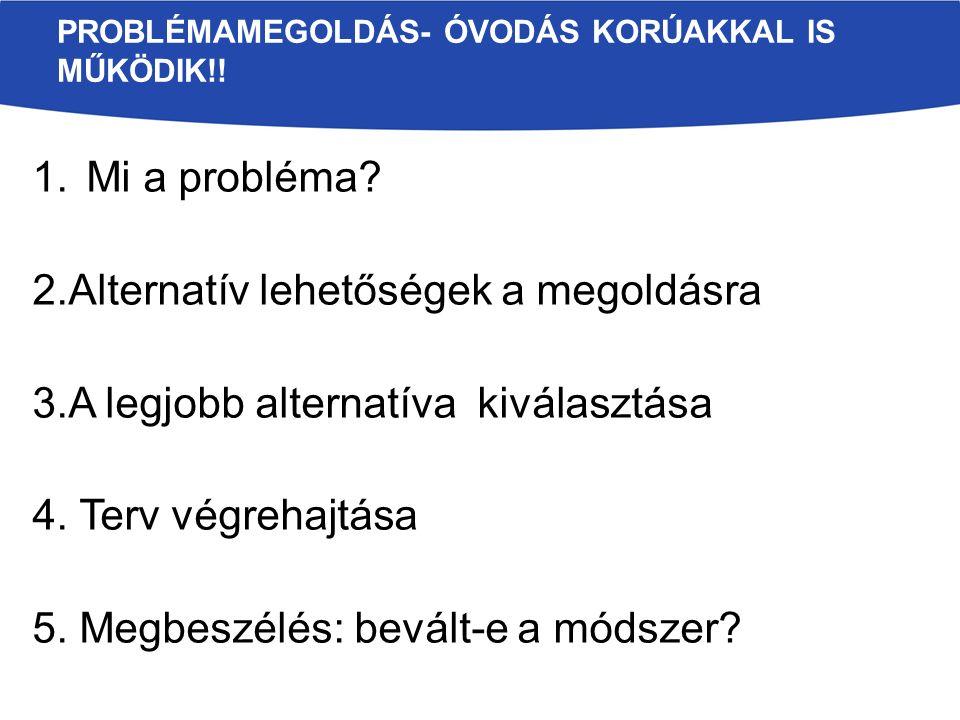 1.Mi a probléma.2.Alternatív lehetőségek a megoldásra 3.A legjobb alternatíva kiválasztása 4.