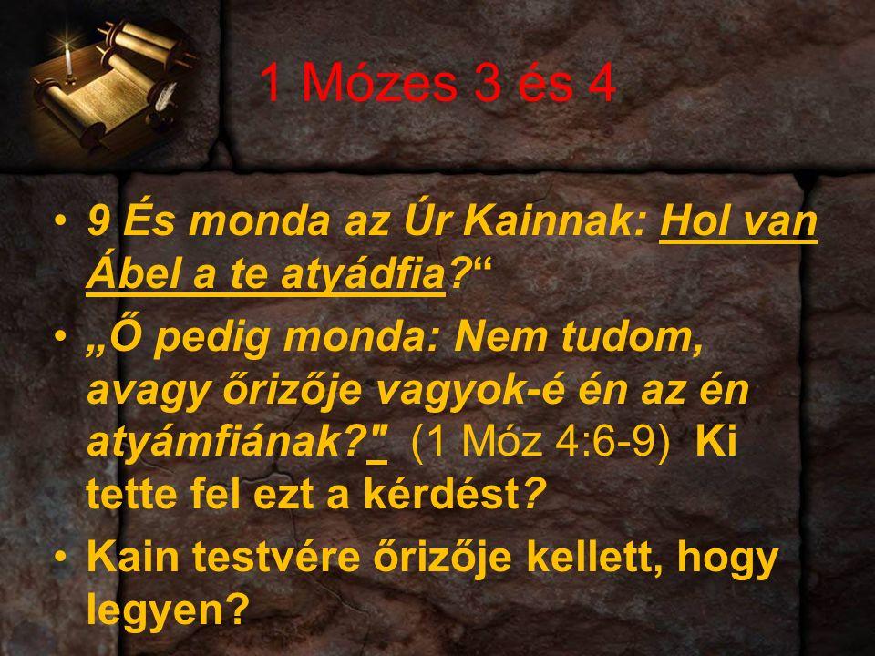 """1 Mózes 3 és 4 9 És monda az Úr Kainnak: Hol van Ábel a te atyádfia """"Ő pedig monda: Nem tudom, avagy őrizője vagyok-é én az én atyámfiának (1 Móz 4:6-9) Ki tette fel ezt a kérdést."""