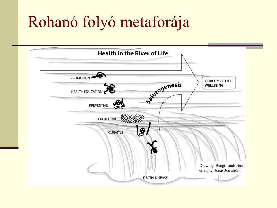 Rohanó folyó metaforája