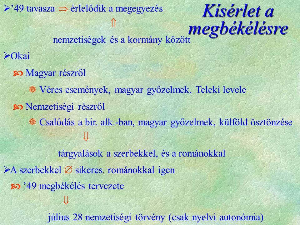  '49 tavasza  érlelődik a megegyezés  nemzetiségek és a kormány között  Okai  Magyar részről  Véres események, magyar győzelmek, Teleki levele  Nemzetiségi részről  Csalódás a bir.