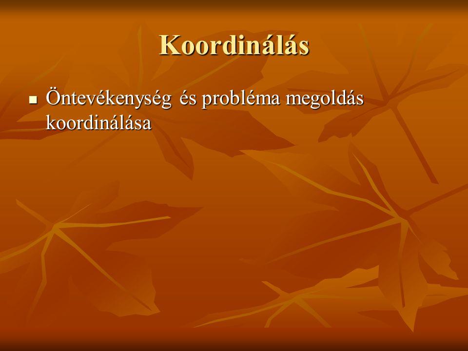 Koordinálás Öntevékenység és probléma megoldás koordinálása Öntevékenység és probléma megoldás koordinálása
