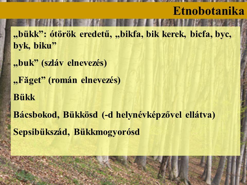 """""""bükk : ótörök eredetű, """"bikfa, bik kerek, bicfa, byc, byk, biku """"buk (szláv elnevezés) """"Făget (román elnevezés) Bükk Bácsbokod, Bükkösd (-d helynévképzővel ellátva) Sepsibükszád, Bükkmogyorósd"""