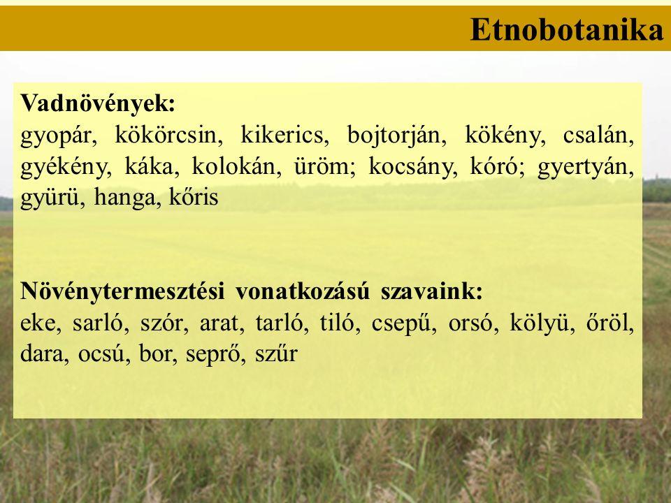 Etnobotanika Vadnövények: gyopár, kökörcsin, kikerics, bojtorján, kökény, csalán, gyékény, káka, kolokán, üröm; kocsány, kóró; gyertyán, gyürü, hanga, kőris Növénytermesztési vonatkozású szavaink: eke, sarló, szór, arat, tarló, tiló, csepű, orsó, kölyü, őröl, dara, ocsú, bor, seprő, szűr