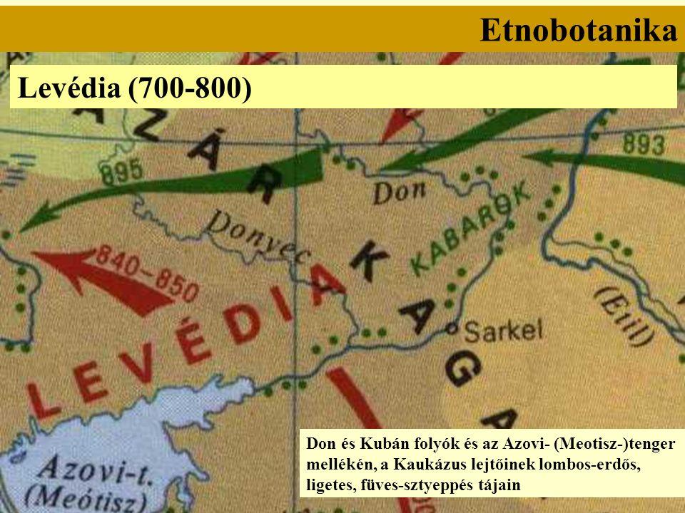 Etnobotanika Levédia (700-800) Don és Kubán folyók és az Azovi- (Meotisz-)tenger mellékén, a Kaukázus lejtőinek lombos-erdős, ligetes, füves-sztyeppés tájain