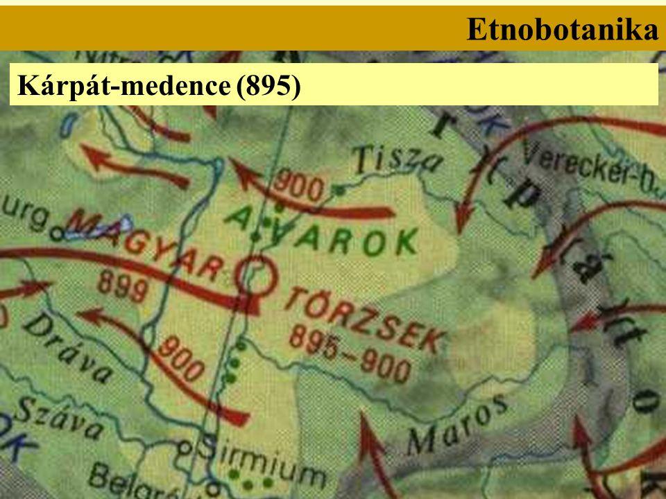 Etnobotanika Kárpát-medence (895)