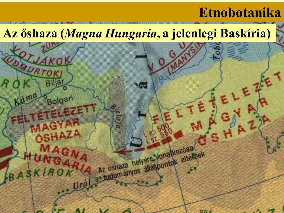 Etnobotanika Az őshaza (Magna Hungaria, a jelenlegi Baskíria)