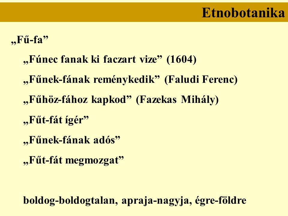 """Etnobotanika """"Fű-fa """"Fúnec fanak ki faczart vize (1604) """"Fűnek-fának reménykedik (Faludi Ferenc) """"Fűhöz-fához kapkod (Fazekas Mihály) """"Fűt-fát ígér """"Fűnek-fának adós """"Fűt-fát megmozgat boldog-boldogtalan, apraja-nagyja, égre-földre"""