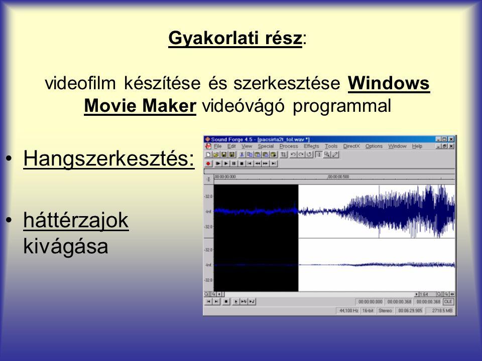 Gyakorlati rész: videofilm készítése és szerkesztése Windows Movie Maker videóvágó programmal Hangszerkesztés: háttérzajok kivágása