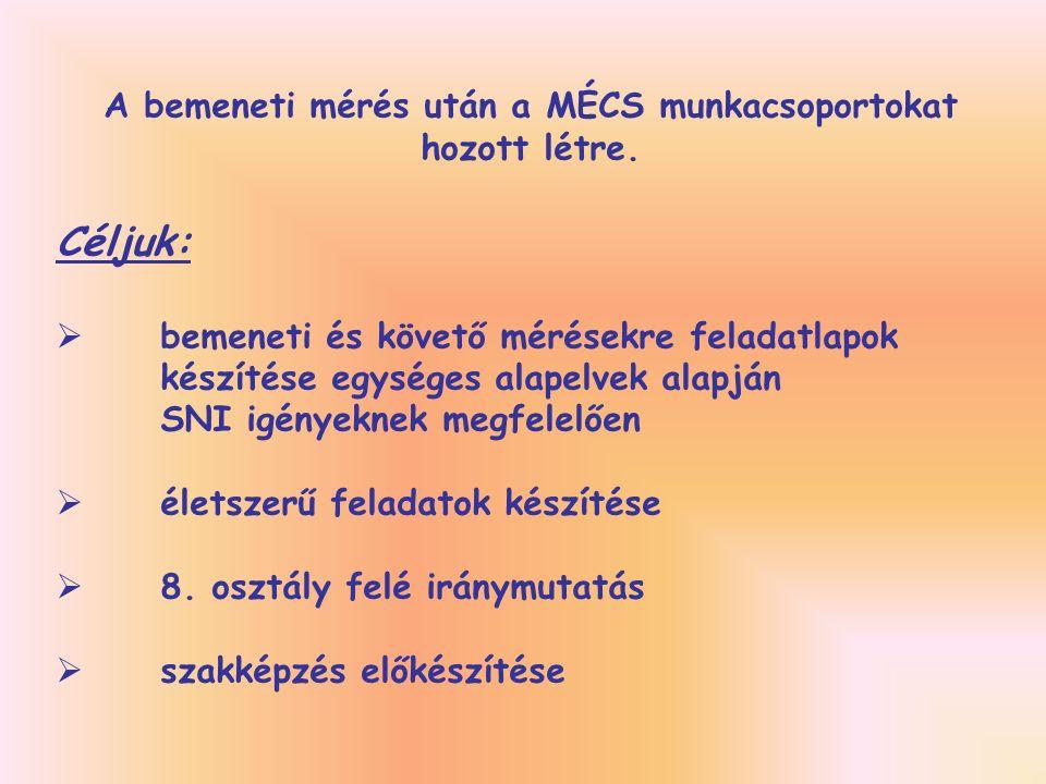 A bemeneti mérés után a MÉCS munkacsoportokat hozott létre.