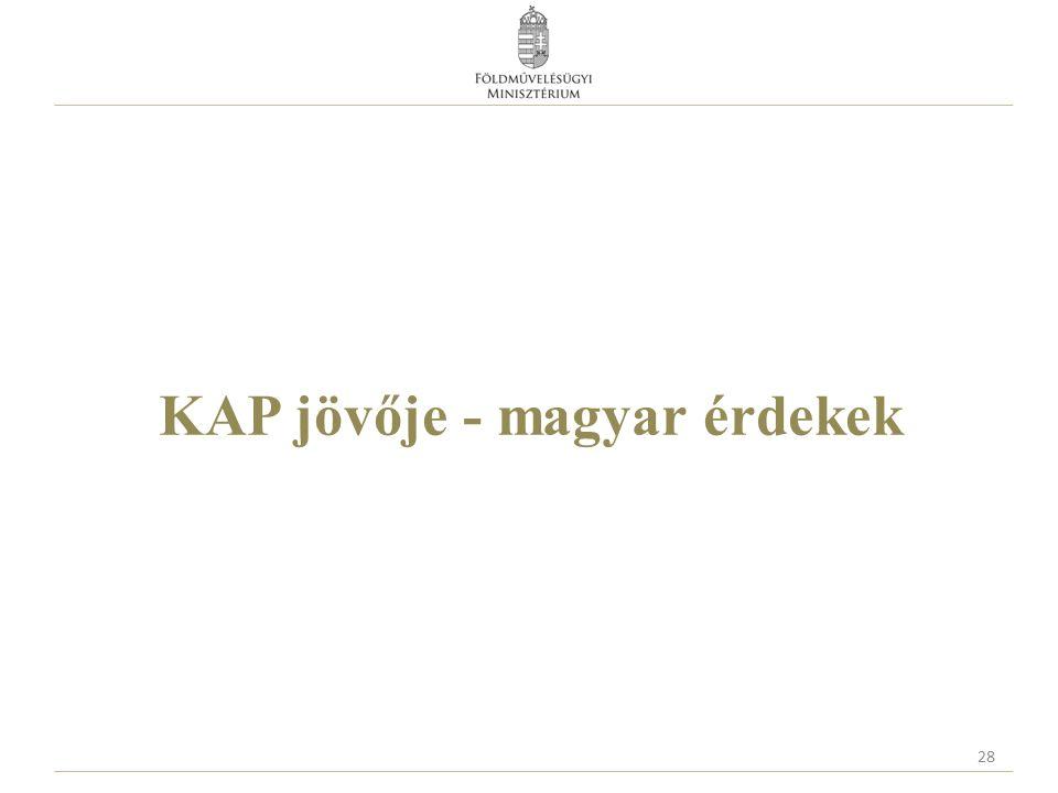 KAP jövője - magyar érdekek 28