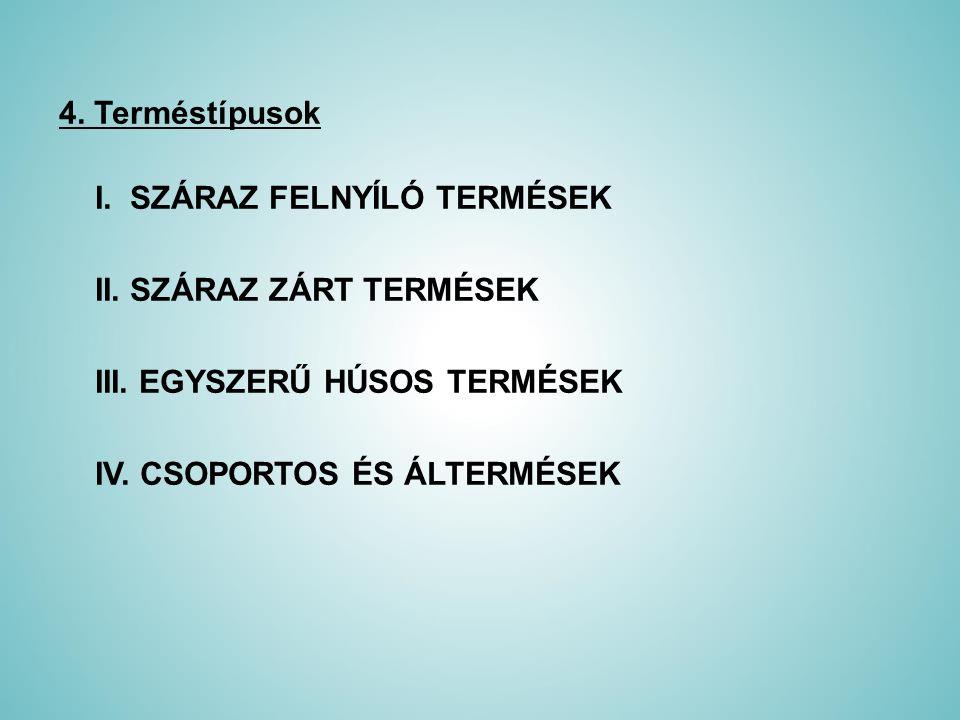 4. Terméstípusok I. SZÁRAZ FELNYÍLÓ TERMÉSEK II. SZÁRAZ ZÁRT TERMÉSEK III. EGYSZERŰ HÚSOS TERMÉSEK IV. CSOPORTOS ÉS ÁLTERMÉSEK