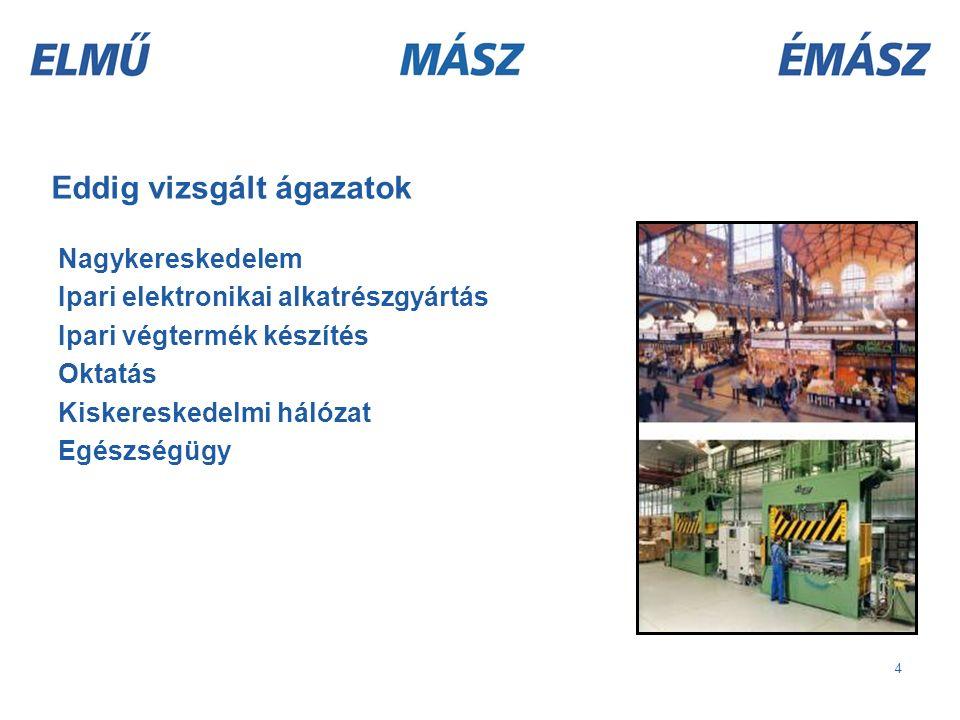 4 Eddig vizsgált ágazatok Nagykereskedelem Ipari elektronikai alkatrészgyártás Ipari végtermék készítés Oktatás Kiskereskedelmi hálózat Egészségügy
