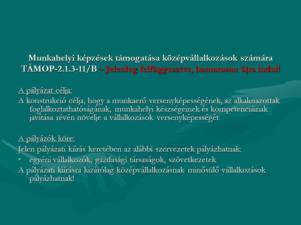 Munkahelyi képzések támogatása középvállalkozások számára TÁMOP-2.1.3-11/B – Jelenleg felfüggesztve, hamarosan újra indul! A pályázat célja: A konstru