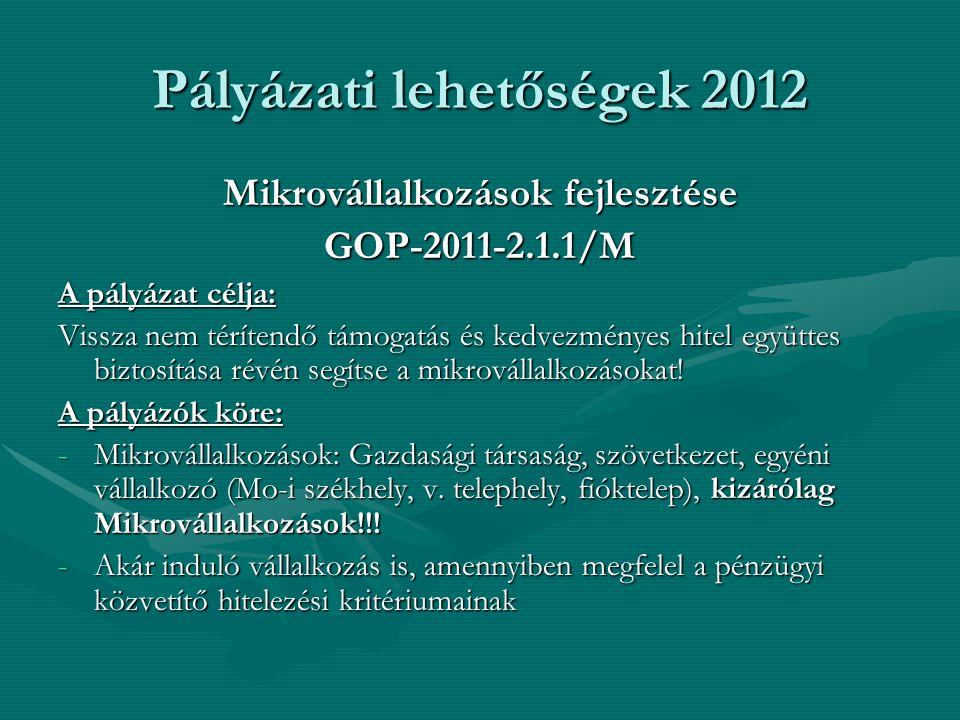 Pályázati lehetőségek 2012 Mikrovállalkozások fejlesztése GOP-2011-2.1.1/M A pályázat célja: Vissza nem térítendő támogatás és kedvezményes hitel együ