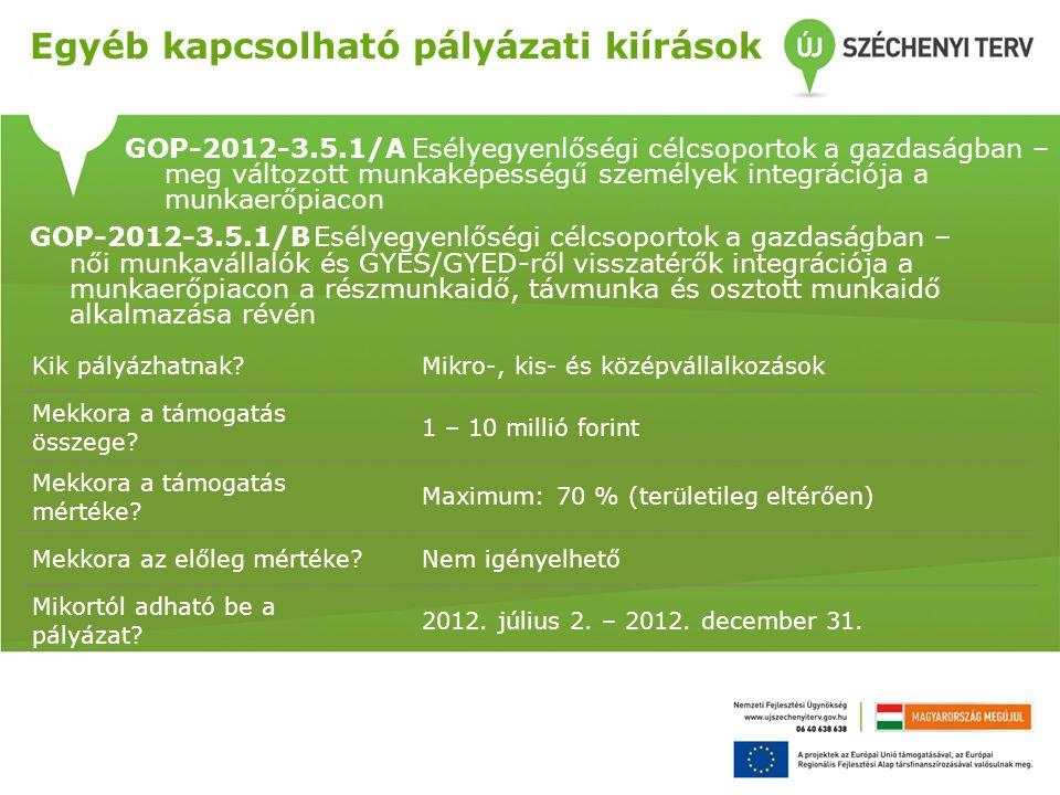 GOP-2012-3.5.1/A Esélyegyenlőségi célcsoportok a gazdaságban – meg változott munkaképességű személyek integrációja a munkaerőpiacon Kik pályázhatnak Mikro-, kis- és középvállalkozások Mekkora a támogatás összege.