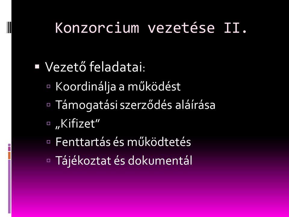 Konzorcium vezetése II.