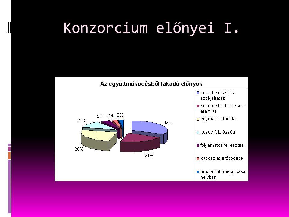 Konzorcium előnyei I.