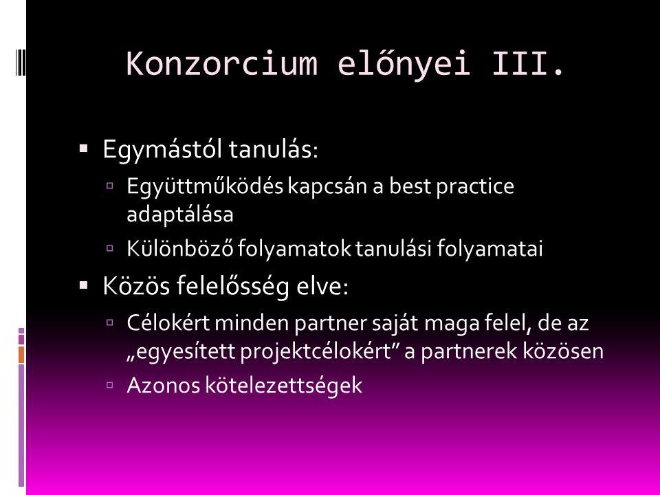 Konzorcium előnyei III.
