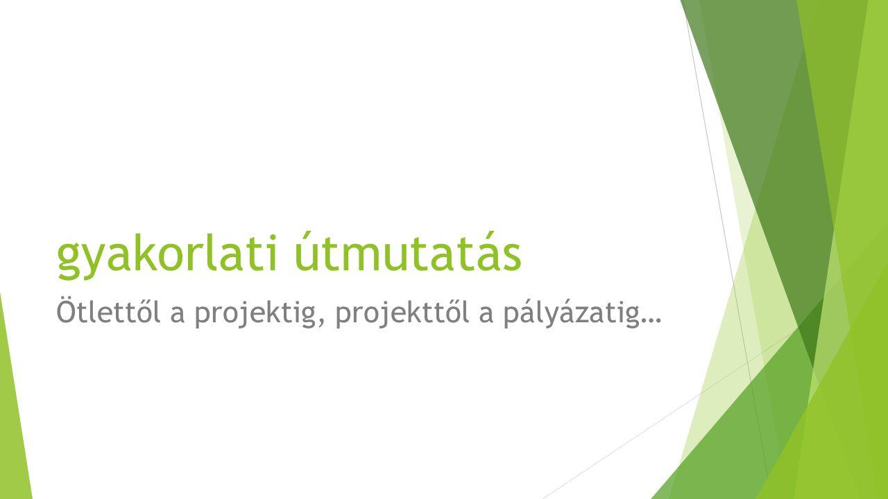 gyakorlati útmutatás Ötlettől a projektig, projekttől a pályázatig…