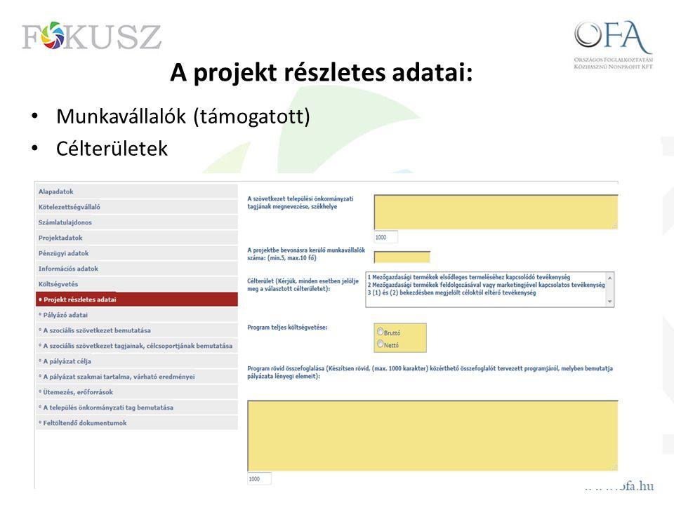 A projekt részletes adatai: Munkavállalók (támogatott) Célterületek