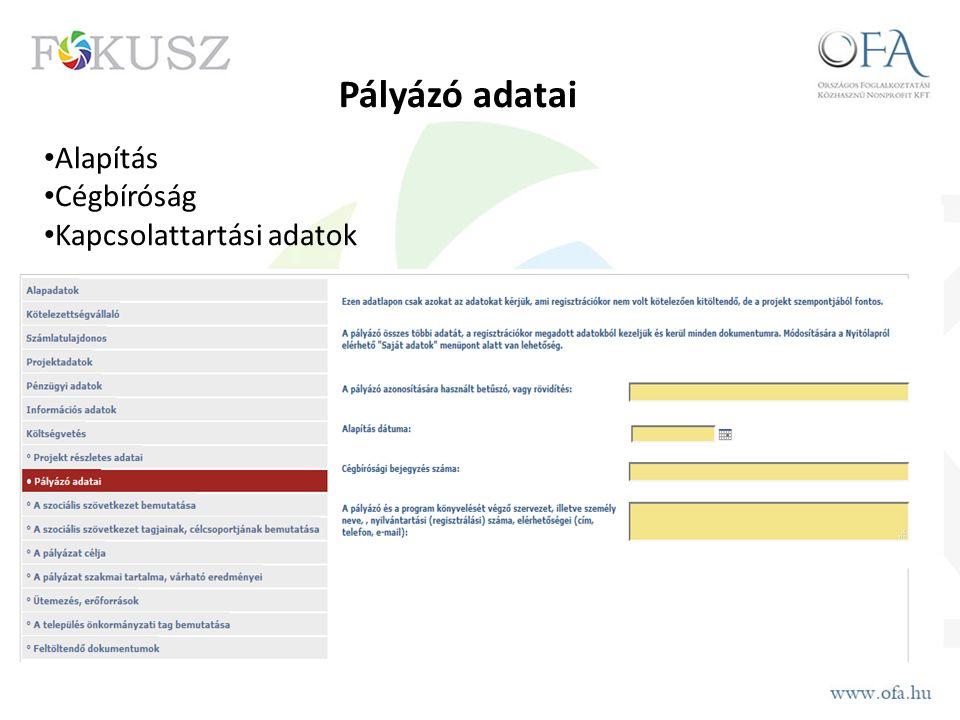 Pályázó adatai Alapítás Cégbíróság Kapcsolattartási adatok