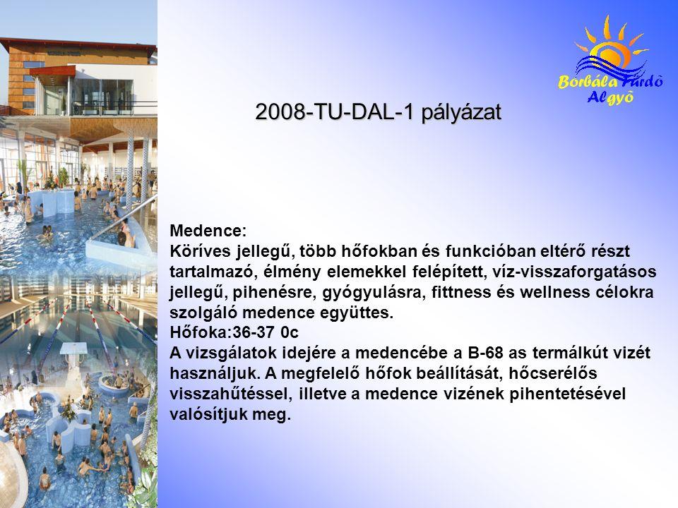 2008-TU-DAL-1 pályázat Medence: Köríves jellegű, több hőfokban és funkcióban eltérő részt tartalmazó, élmény elemekkel felépített, víz-visszaforgatásos jellegű, pihenésre, gyógyulásra, fittness és wellness célokra szolgáló medence együttes.