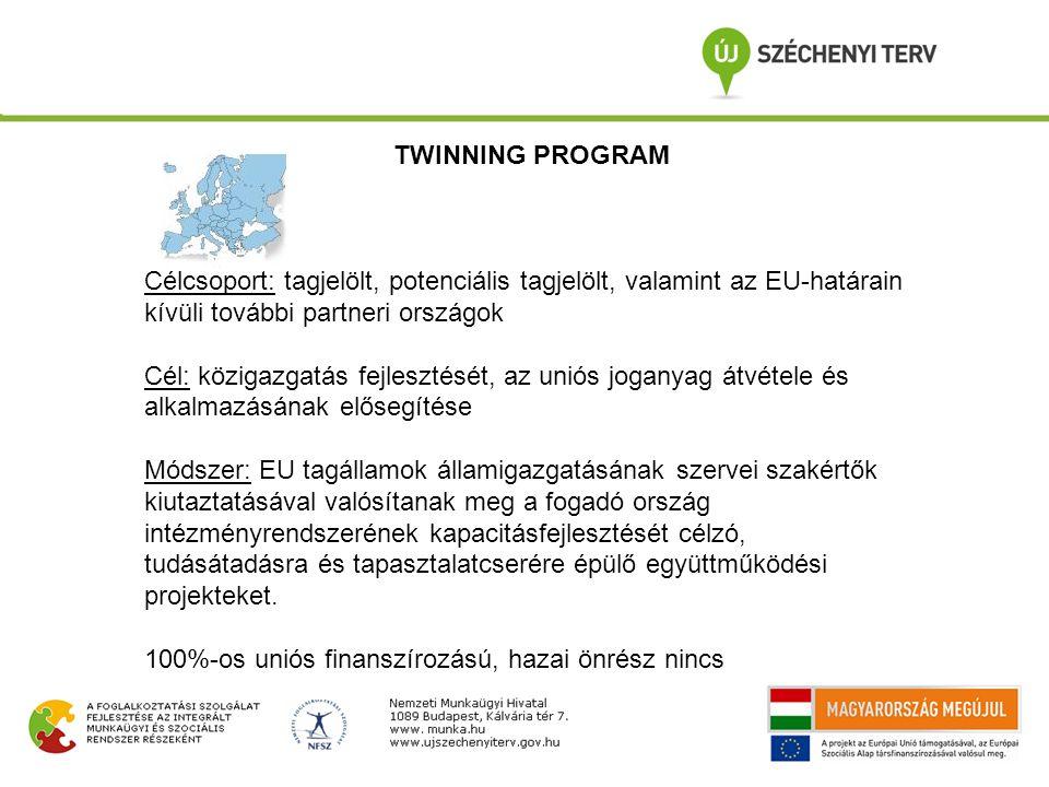 TWINNING PROGRAM Célcsoport: tagjelölt, potenciális tagjelölt, valamint az EU-határain kívüli további partneri országok Cél: közigazgatás fejlesztését, az uniós joganyag átvétele és alkalmazásának elősegítése Módszer: EU tagállamok államigazgatásának szervei szakértők kiutaztatásával valósítanak meg a fogadó ország intézményrendszerének kapacitásfejlesztését célzó, tudásátadásra és tapasztalatcserére épülő együttműködési projekteket.