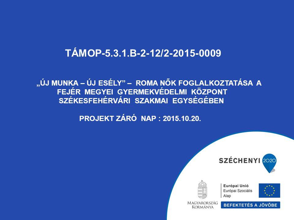 """TÁMOP-5.3.1.B-2-12/2-2015-0009 """"ÚJ MUNKA – ÚJ ESÉLY – ROMA NŐK FOGLALKOZTATÁSA A FEJÉR MEGYEI GYERMEKVÉDELMI KÖZPONT SZÉKESFEHÉRVÁRI SZAKMAI EGYSÉGÉBEN PROJEKT ZÁRÓ NAP : 2015.10.20."""